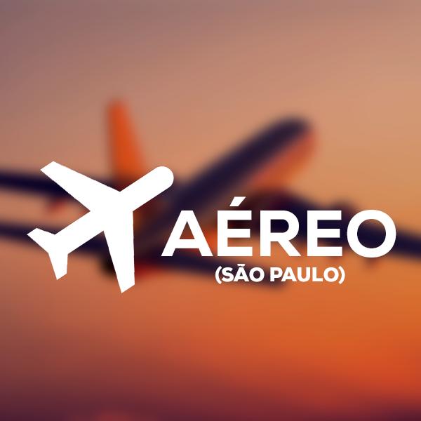 Imagem AÉREO SAÍDA SÃO PAULO - FRETAMENTO